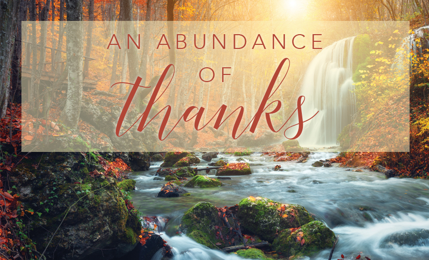 At this special time of year, we give thanks for the gifts we're given and the people in our lives. We at Douglas Shaw & Associates asked our...